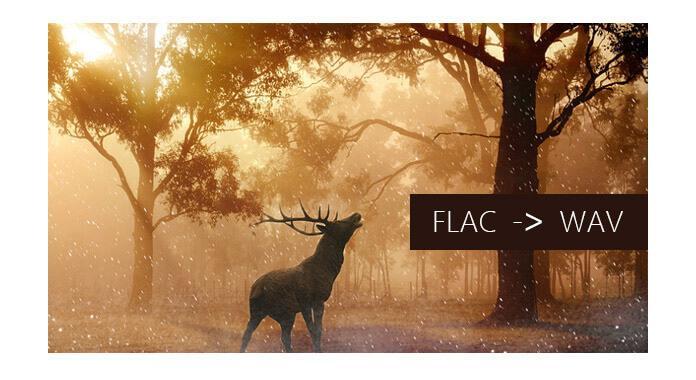 FLAC a WAV