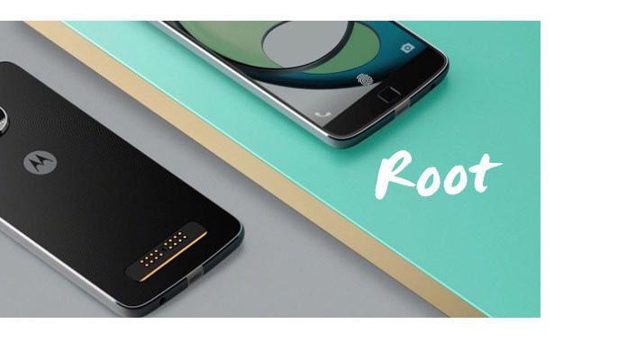 Root Moto