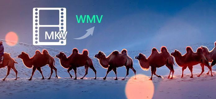 MKV in WMV