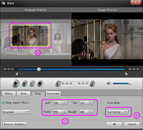 How to Convert DVD and Video to Your Fashionable iPad Crop