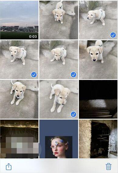 Seleziona Foto duplicate su iPhone