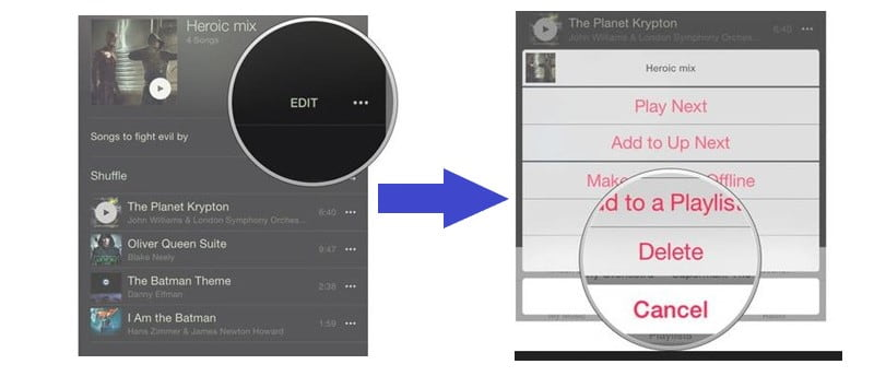 Delete Playlist from iPhone Directly