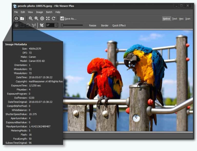 Uniwersalne oprogramowanie do przeglądania plików