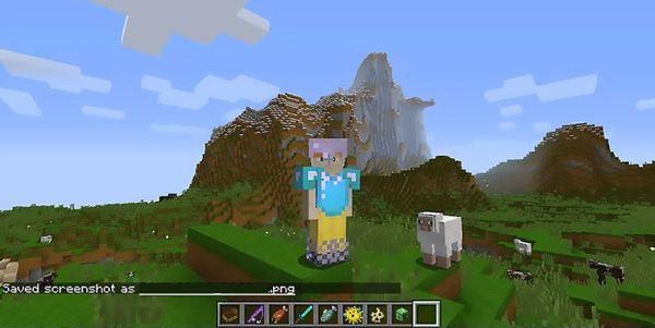 Στιγμιότυπο οθόνης στο minecraft