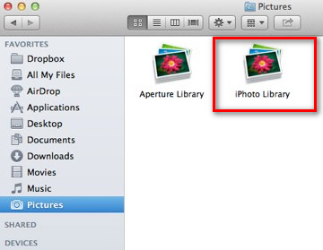iPhoto Library