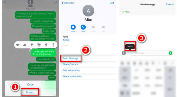 Copy and Paste Text Messages on iPhone