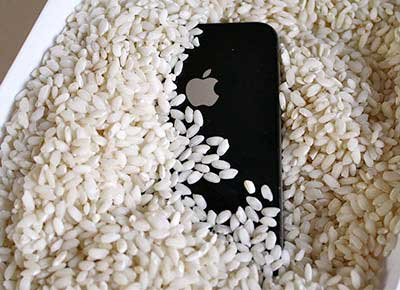 Put iPhone into Rice