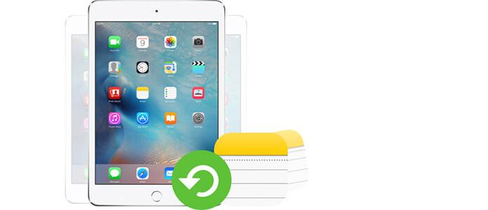 Obnovení odstraněných poznámek iPadu