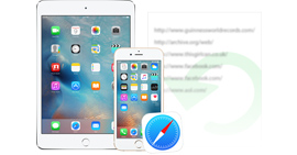 Recover iPhone iPad Safari History