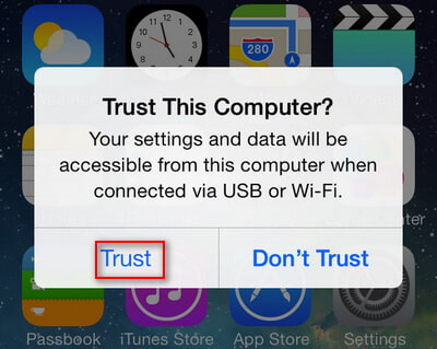 tap Trust on your iPhone