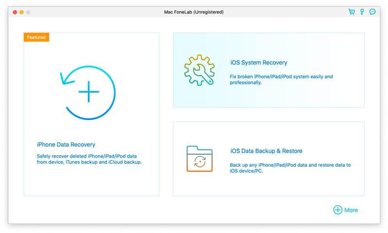 Wybierz interfejs odzyskiwania systemu iOS
