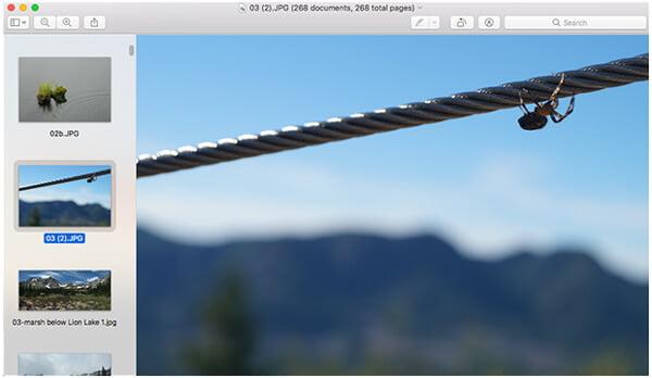 Προεπισκόπηση όλων των εικόνων σε Mac