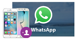 Add Contacts to WhatsApp