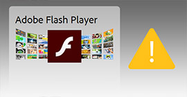 的Adobe Flash Player