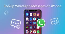 Backup del messaggio WhatsApp su iPhone