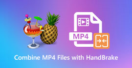 Combina file MP4 con HandBrake