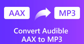 Convertire Audible AAX in MP3