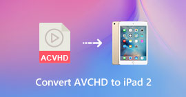 Convertitore video 2 per iPad