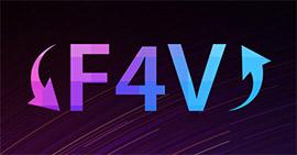 Converteer F4V naar MP4