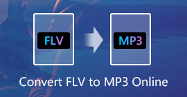 FLV to MP3 Free Online