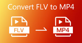 Converti FLV in MP4 gratuitamente