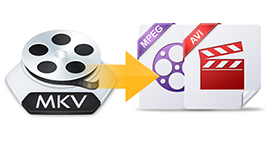 Convert MKV to AVI and MPEG
