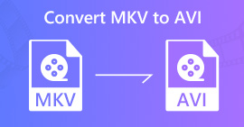 Convertire MKV in AVI