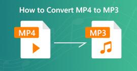 Converti MP4 in MP3