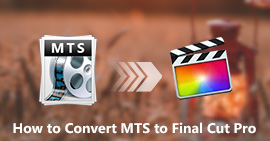 Converti MTS in FCP