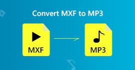 Converti MXF in MP3