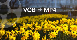 How to Convert VOB to MP4 on Win/Mac