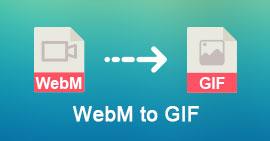 Converti WebM in GIF
