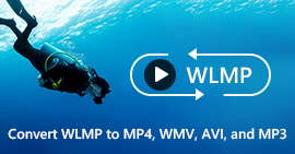 How to Convert WLMP