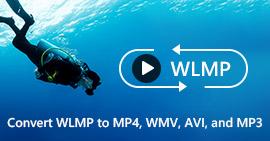 Come convertire WLMP