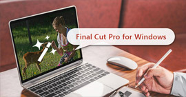 Widnows Final Cut Pro