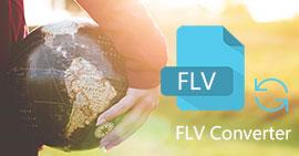 Convertitore FLV online gratuito