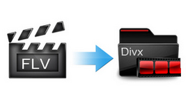 How to Convert FLV to DivX