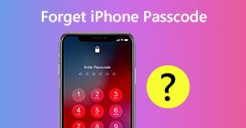 Dimentica il passcode dell'iPhone