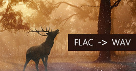 將FLAC轉換為WAV