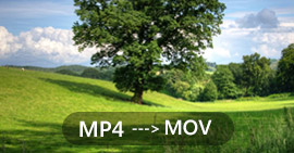 Converti MP4 in MOV