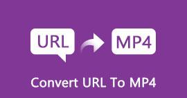 Converti URL in MP4