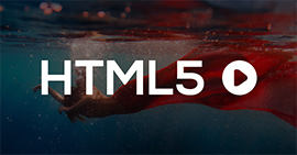 Solutions to HTML5 Video Playback and Conversion