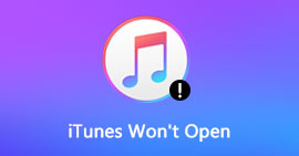 iTunes Won't Open