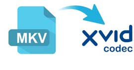 How to Convert MKV to XviD