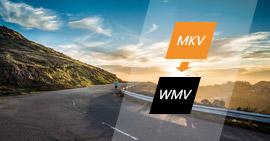 Mkv až Wmv