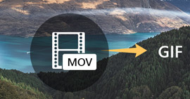 MOV Video in GIF animate