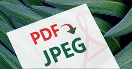 PDF σε JPEG