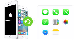 Recover iPhone Data