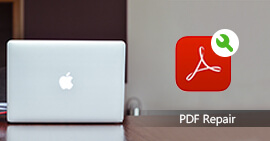 Repair and Recover PDF File