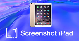 Taking ScreenShot on iPad